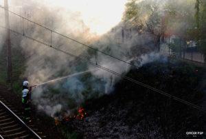 pozar traw dym strazacy 300x202 - W kadrze